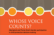Whose Voice Counts? (Dec 2015)