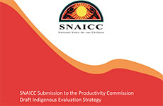 Draft Indigenous Evaluation Strategy